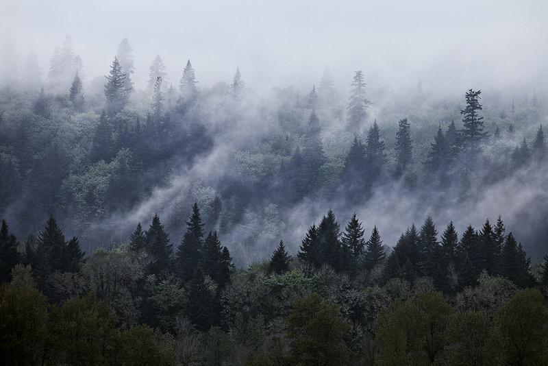 Columbia River Gorge, Oregon, fog, washington, photo