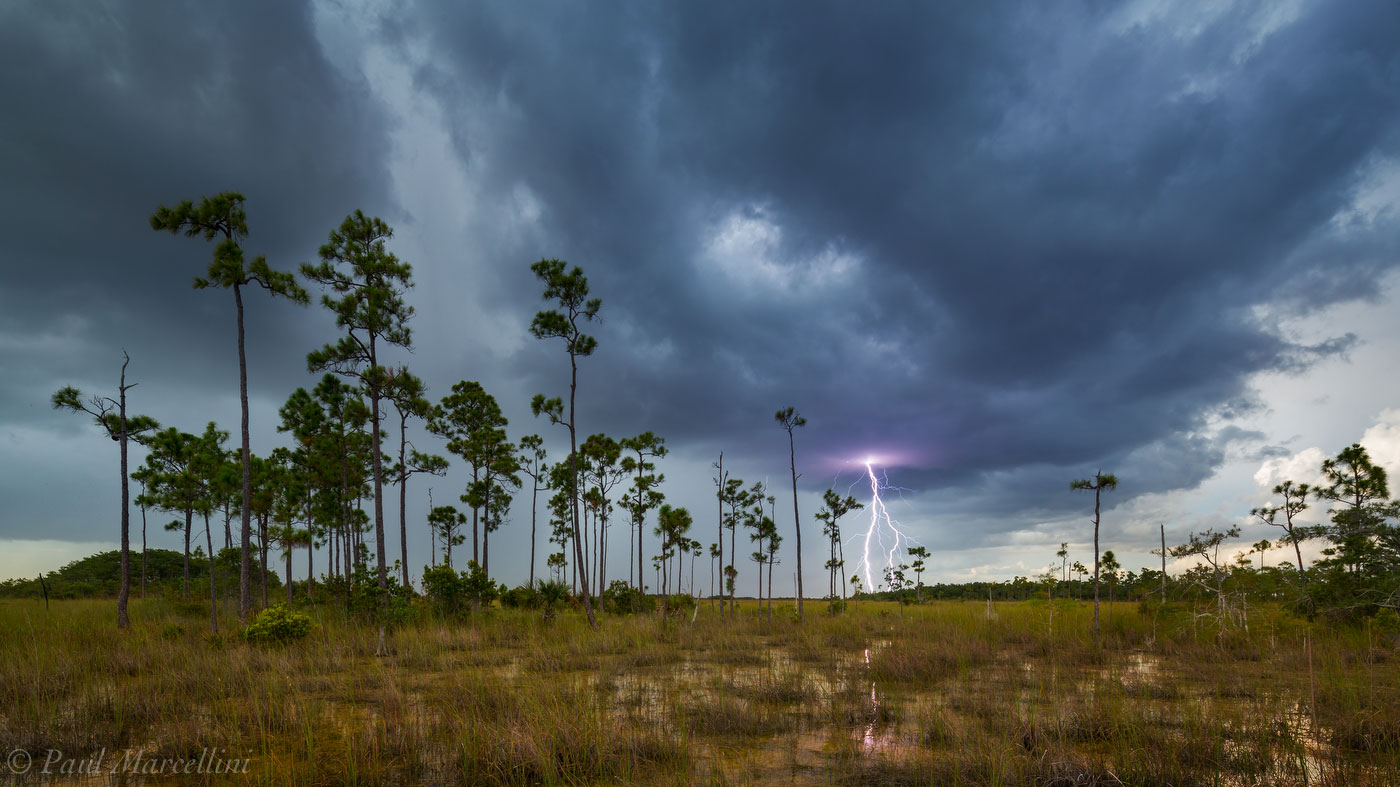 pinelands, everglades, lightning, florida, nature, photography, florida national parks, photo
