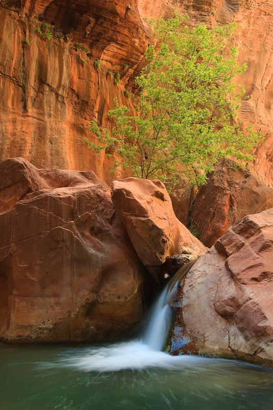 Virgin River Narrows, Zion, National Park, Utah, , photo
