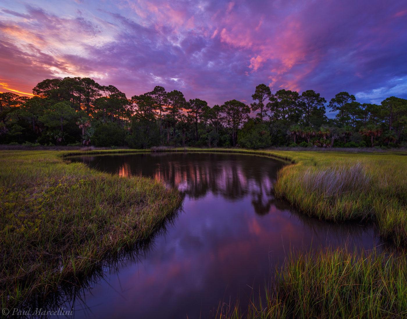 gulf coast, cedar key, florida, sunset, salt marsh, pineland, nature, photography, photo