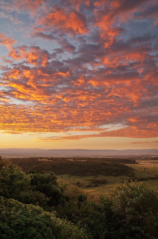 sunrise, kenya, africa, masai mara, photo