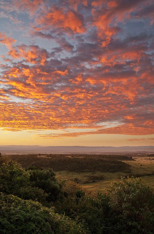 sunrise, kenya, africa, masai mara, photo