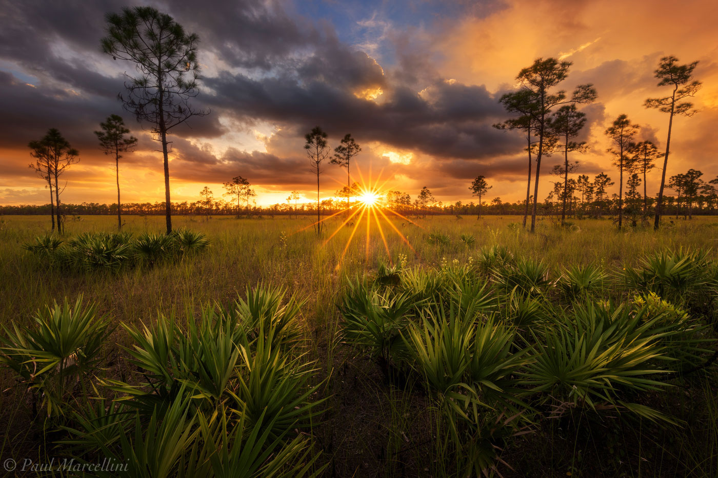 everglades, stormy, sunset, Long Pine Key, Everglades National Park, Florida, pinelands, photo