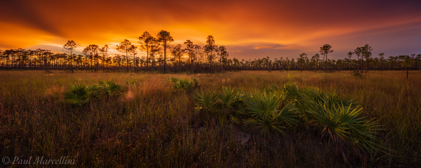 sunset, Everglades National Park, Florida, pine rocklands, prairie, photo