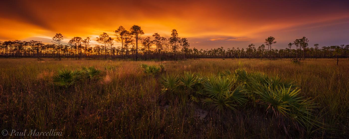 sunset, Everglades National Park, Florida, pine rocklands, prairie, photo