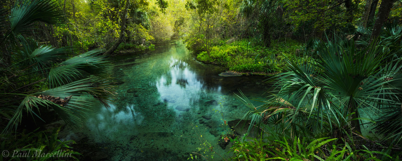 rock springs run, springs, orlando, florida, UFHEALTH, photo
