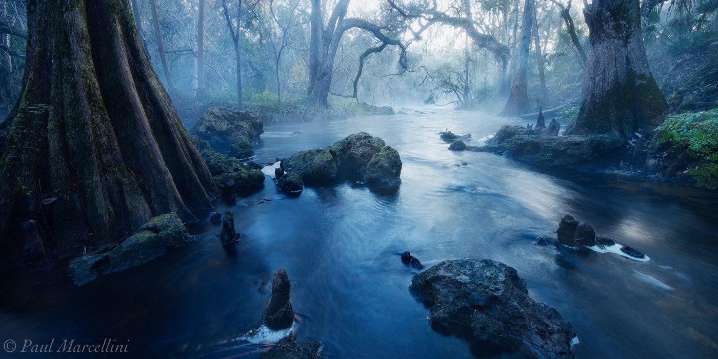 Hillsborough River State Park, Florida, misty, UFHEALTH, photo